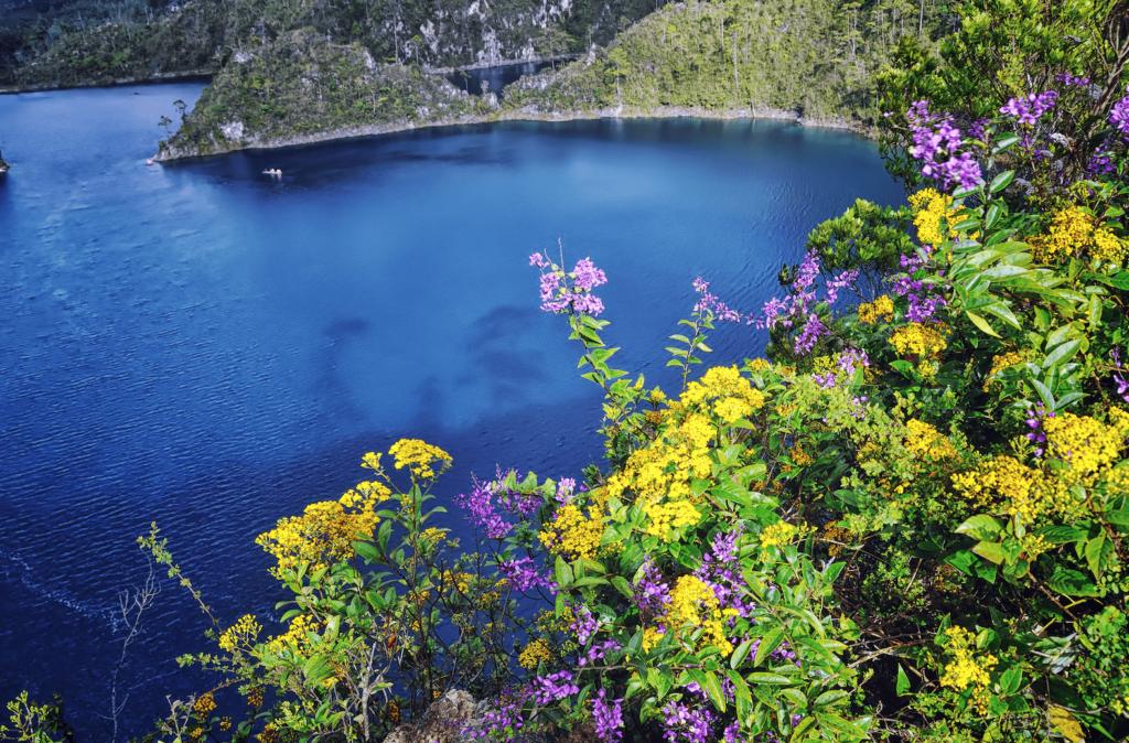 Laguna de Montebello en Chiapas durante la primavera con flores