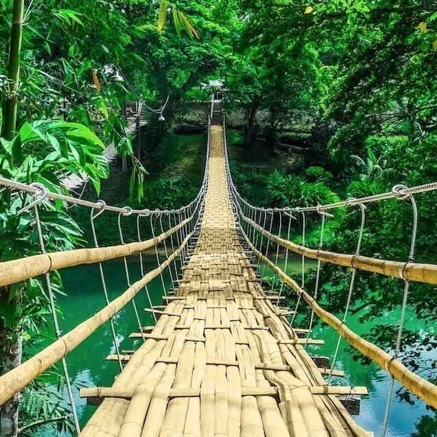 Puenta de bambu en un parque nacional del mundo