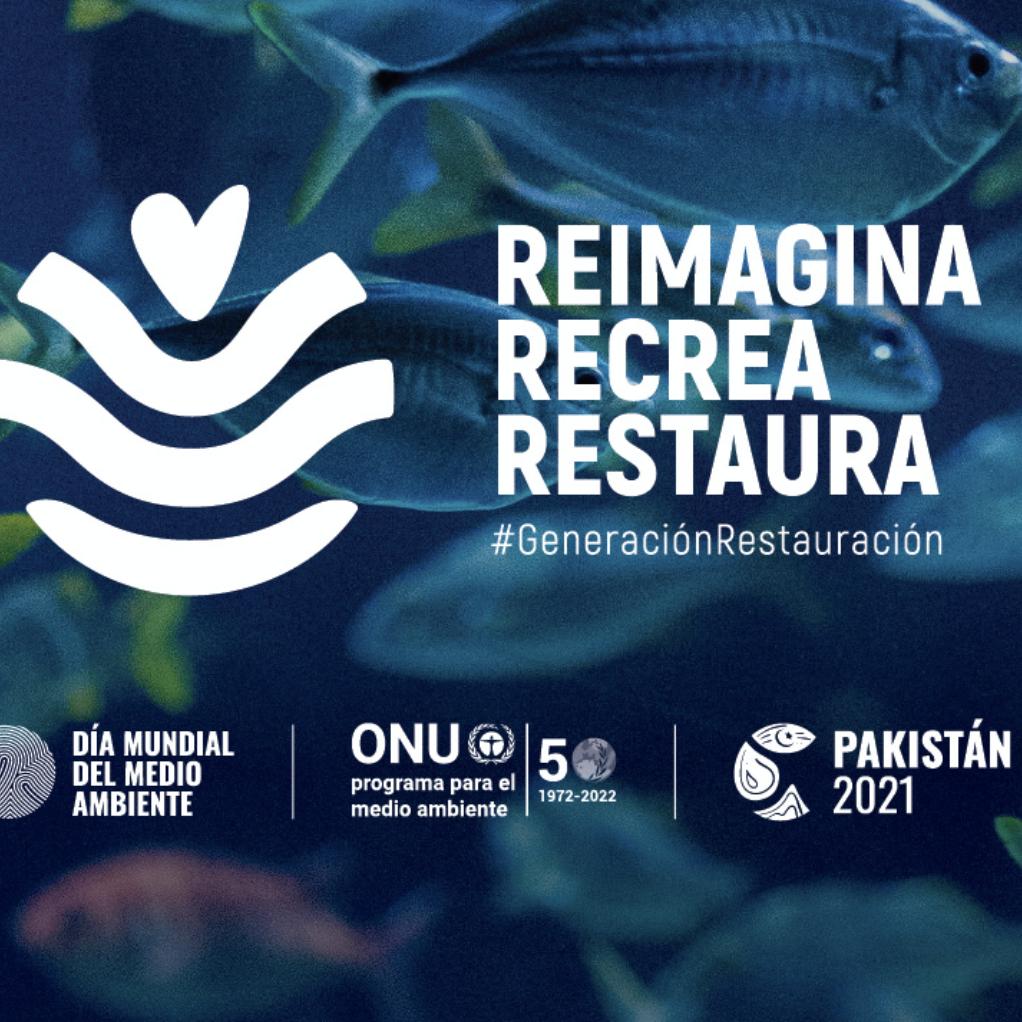 Día Mundial del Medio Ambiente: Reimagina, recrea, restaura